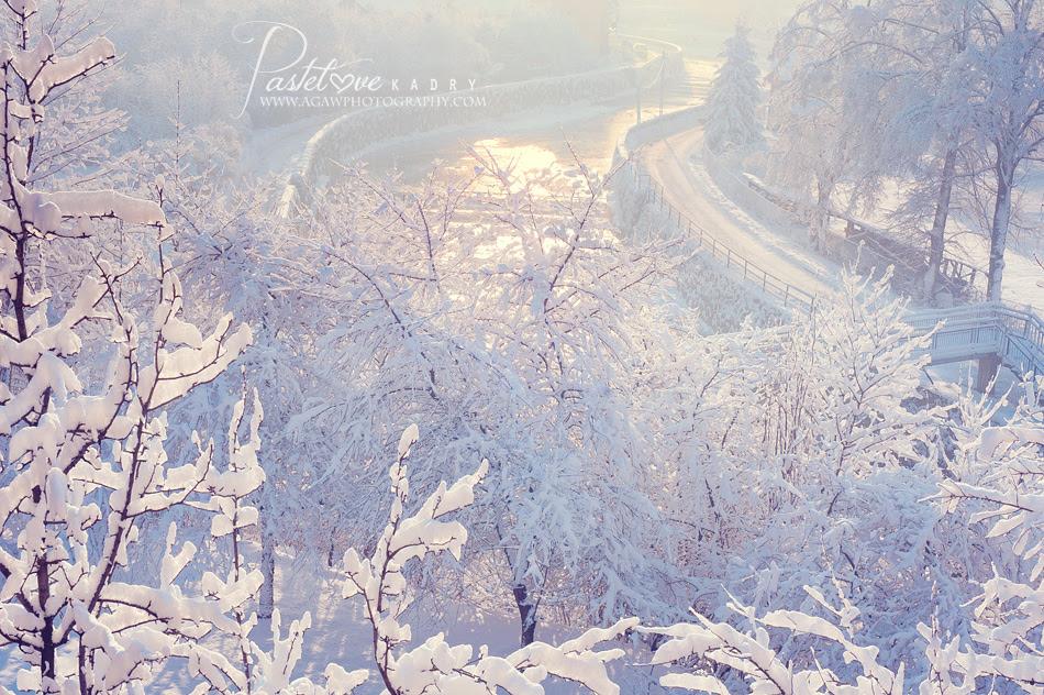 fotograf szczawnica zima