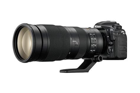 Best Nikon Lenses for Wildlife Photography   Best Camera News