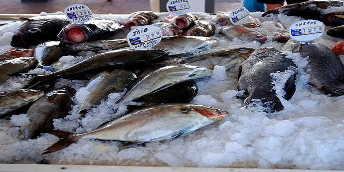 Fischmarkt auf Pico