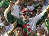 fans Algérie  Coupe du Monde 2014