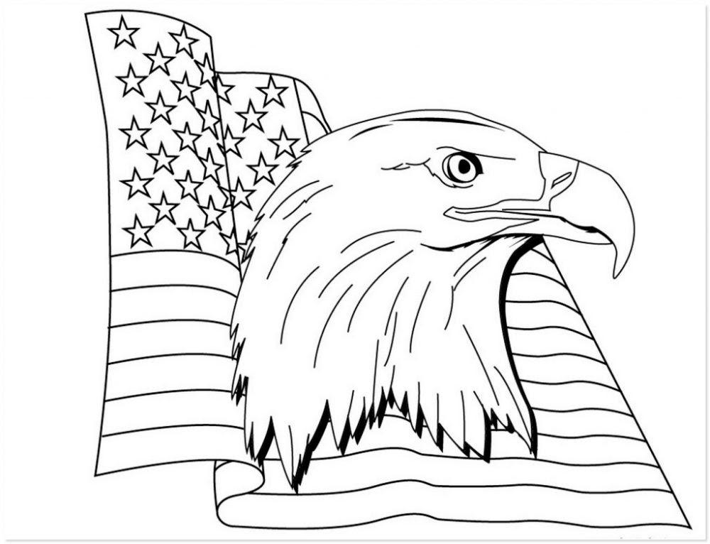 águila Y La Bandera De Eeuu Para Pintar Imágenes Y Fotos