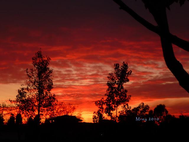 11-30-2010 sunset 2