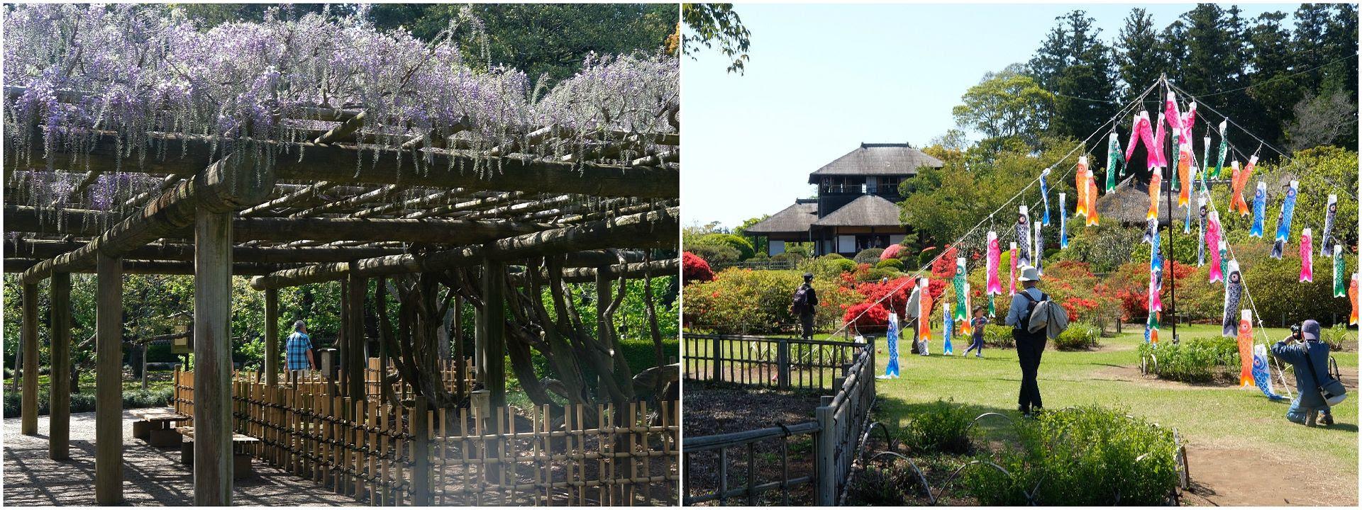 photo Kairakuen Garden Ibaraki_1.jpg