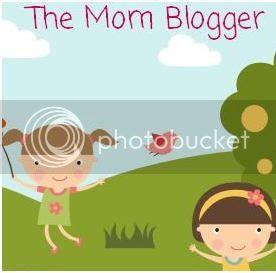 The Mom Blogger
