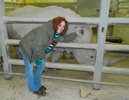mama rhino and me