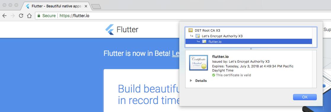 why the ssl cert on flutter io belongs to Jesse Maxwell ? - Google