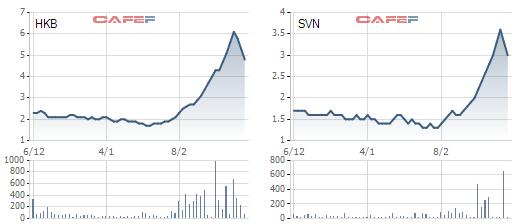 HKB, SVN đồng loạt giảm sàn sau chuỗi ngày tăng nóng