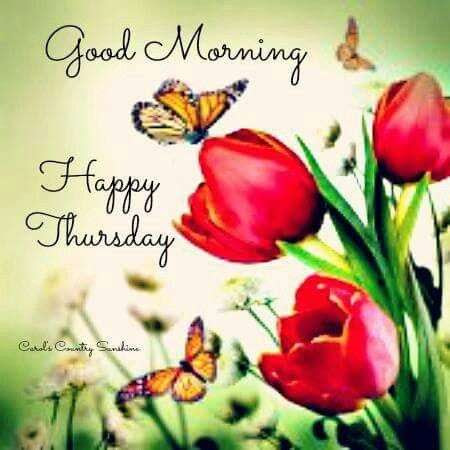 Good Morning Happy Thursday Goodmorningpicscom