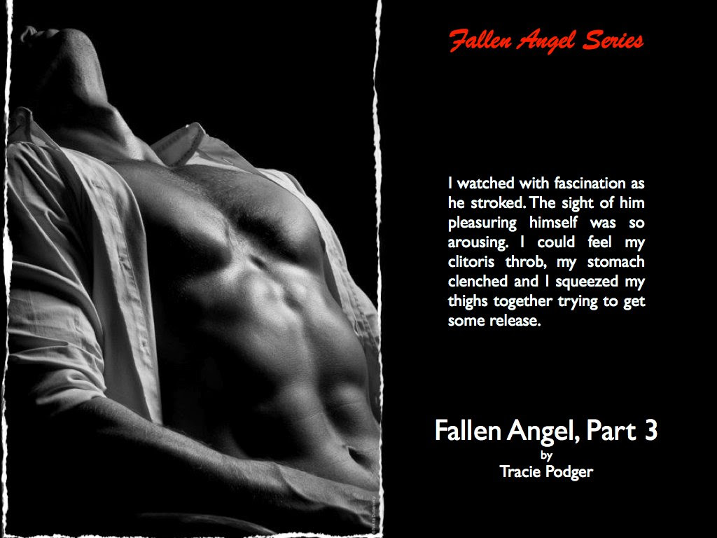 Photo of a man representing the lead character in Fallen Angel 3, with a quote from the novel.