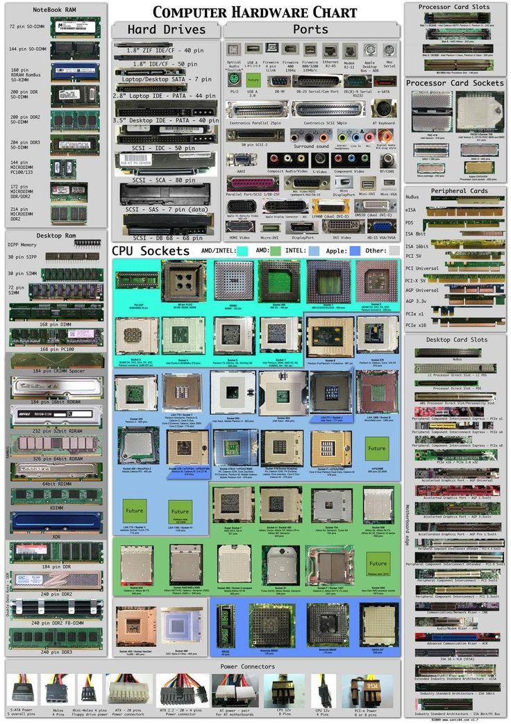 Computer Hardware Chart Infogr