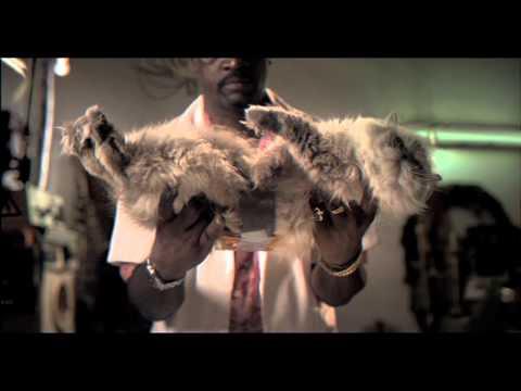 video que muestra como juntan a un gato y una tostada para hacer una especie de turbina