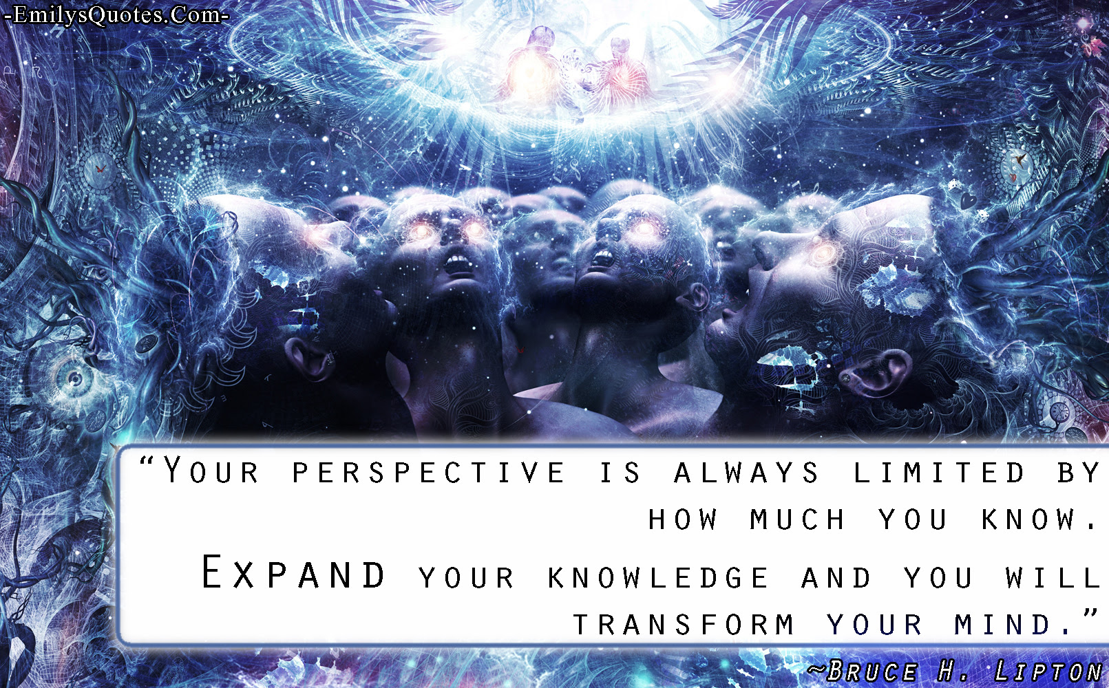 Your Perspective Is Always Limited By How Much You Know Expand Your