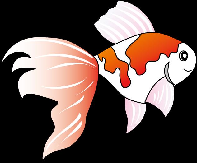 スイカトウモロコシ夏祭り金魚 季節夏の素材8月イラストポップ