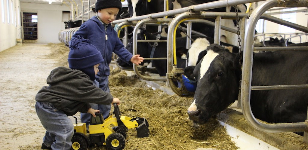 Taking on farm challenges - Farm and Dairy