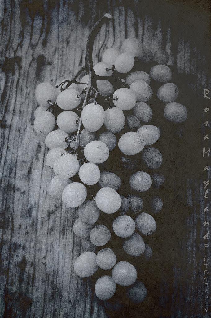 Grapes 2 8 bis