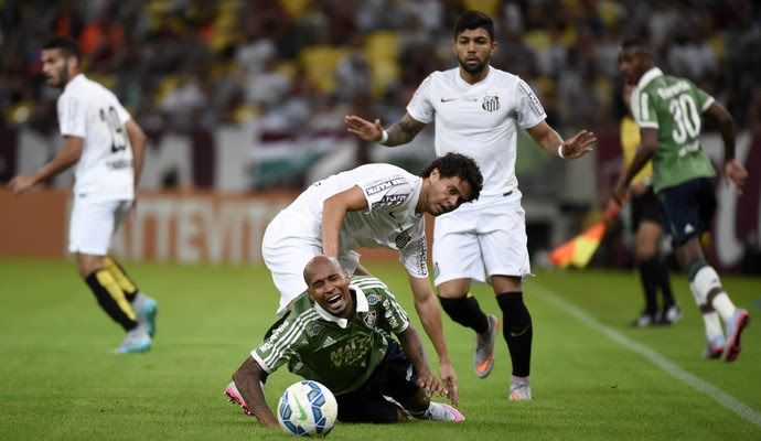 Fluminense x Santos - Wellington Silva (Foto: André Durão)