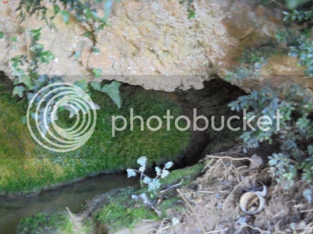 photo PENtildeA IZAGA 05-04-15 056_zpsmy5xh9jh.jpg