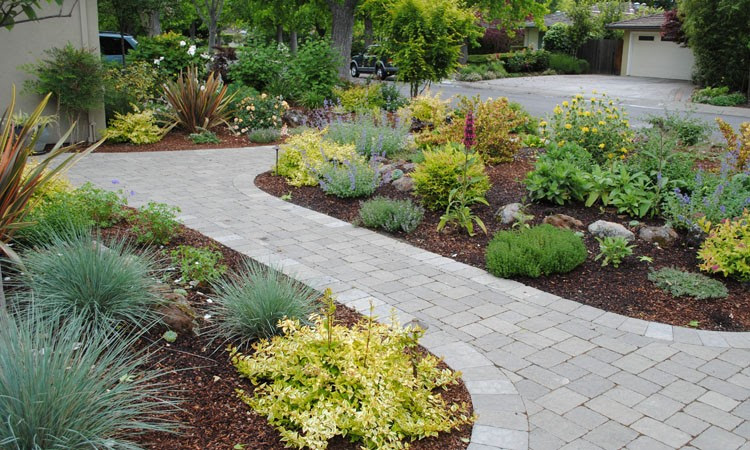 New Blog Here: Backyard landscaping without grass