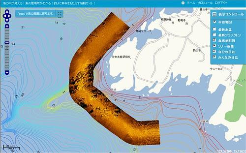 海底写真(神奈川県、三浦半島、荒崎)