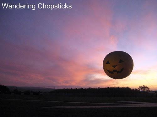 Great Park Balloon - Orange County Great Park - Irvine 5