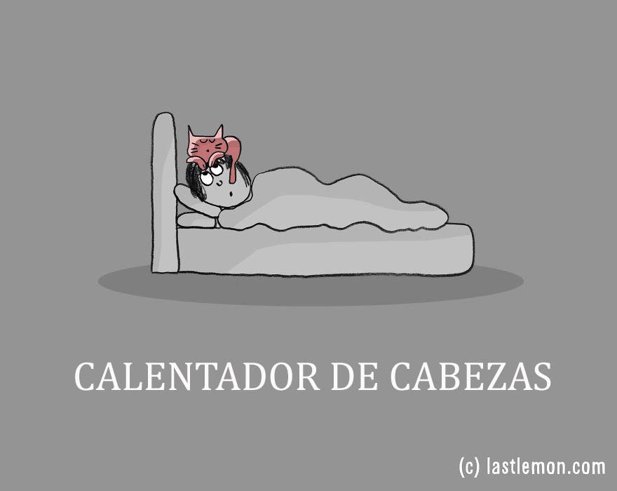 trabajos-gatos-lastlemon-15