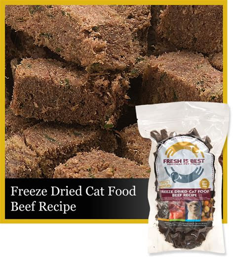 freeze dried beef cat food fresh
