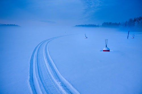 Snowmobile tracks
