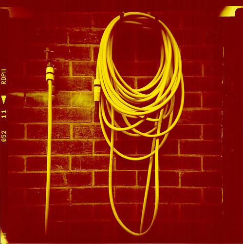 yellow hose by pho-Tony