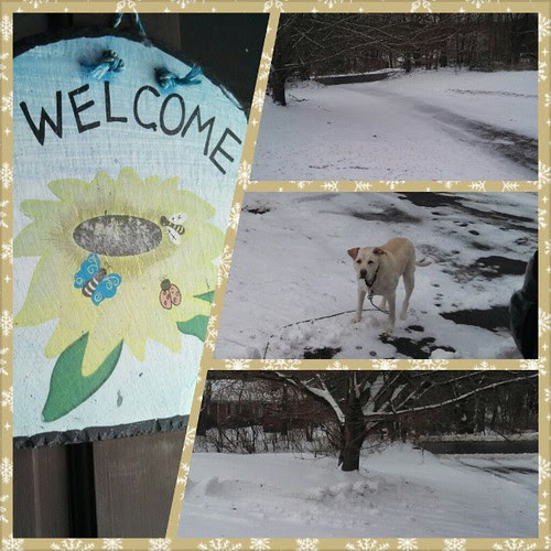 "What happens when you hang up the ""Welcome Spring"" sign... #snow #march #newengland"