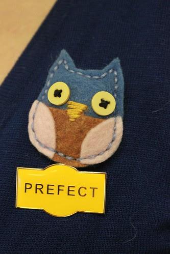 Brown Owls - 20 August meeting