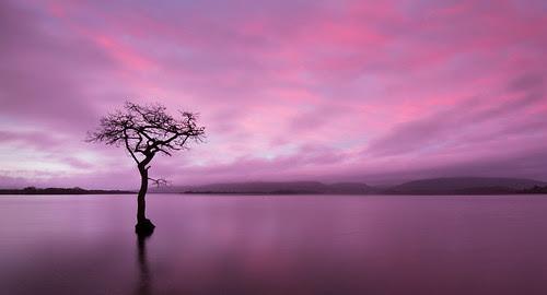 Loch Lomond Sunrise by Billy Currie