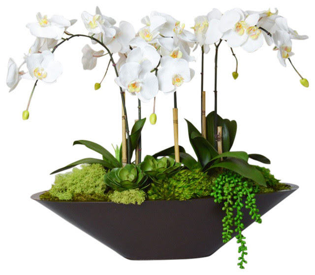 Orchid in Large Metal Boat  Traditional  Artificial