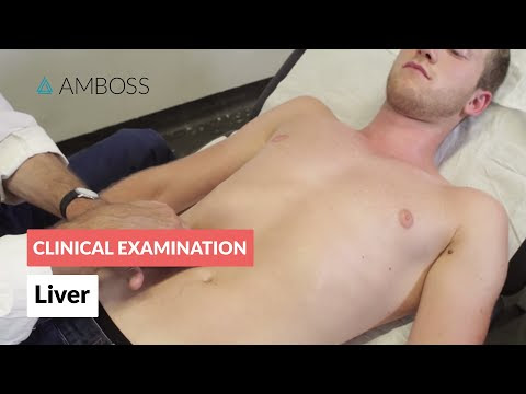 Examination of the Liver  - Medical Examination