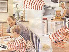 http://i.dailymail.co.uk/i/pix/2006/06/kitchengrap120606_228x174.jpg