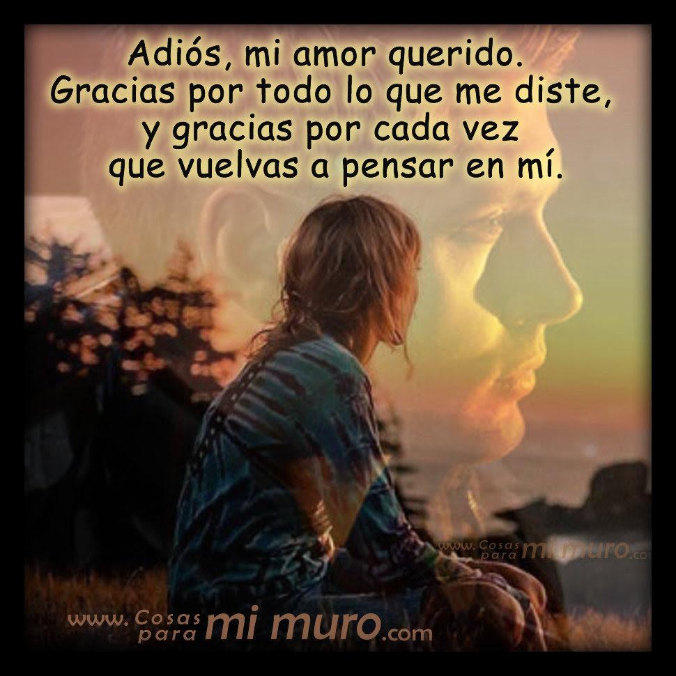 Adios Mi Querido Amor Cosas Para Mi Muro