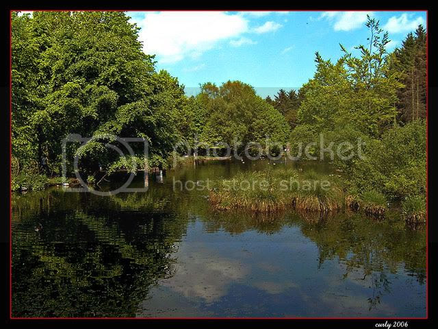 picture of lake, Hardiwick Hall, Sedgefield, County Durham