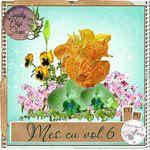 fleurs_1af4b04