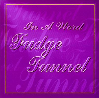 Fudge Tunnel - In A Word Album Cover