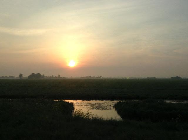 NL_landscape