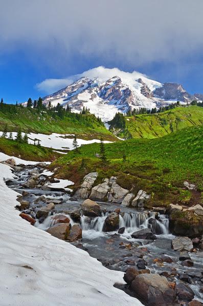 Stream and Mt. Rainier, Mt. Rainier National Park