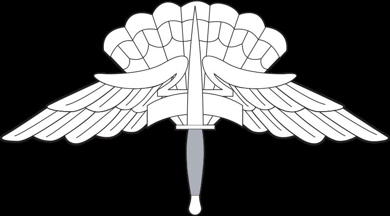 File:USAF - Occupational Badge - High Altitude Low Opening.svg