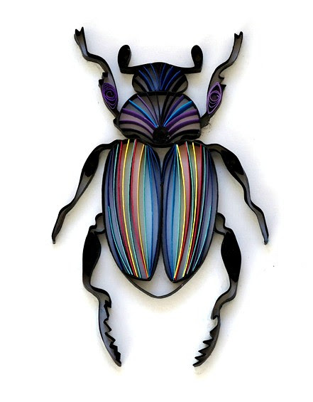 quilled beetle