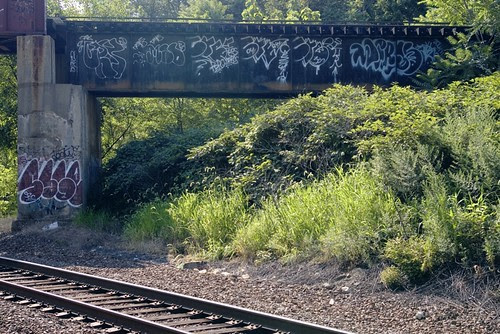 tags and throwies on a railroad bridge.jpg