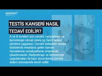Testis kanseri nasıl anlaşılır, nasıl tedavi edilir? - Anadolu Sağlık Merkezi