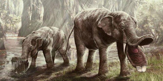Gajah Purba ini seperti monster !