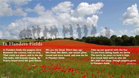 flanders fields confusions  connections