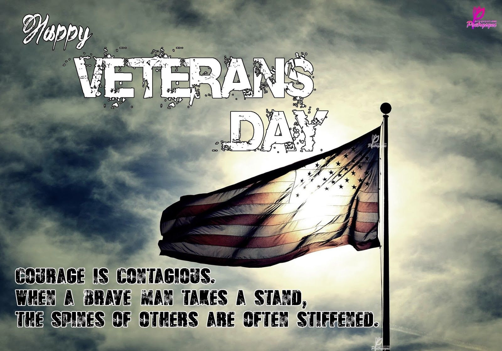 Happy Veterans Day Image Pictures Photos And Images For Facebook