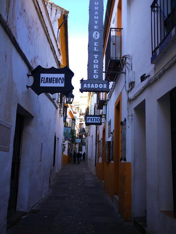 百花巷 Calle de las Flores