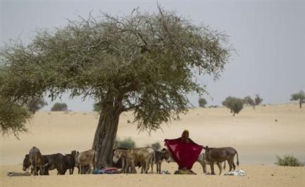 Το Τσαντ υποφέρει από λειψυδρία. Στο υπέδαφος, όμως, κρύβονται μεγάλα αποθέματα νερού(Φωτογραφία:Associated Press)