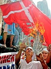 Burning the Danish flag